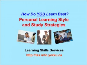 Learning Style Blue Title 2013-2014