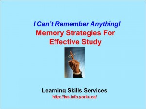 Memory Strategies BlueTitle2013.14